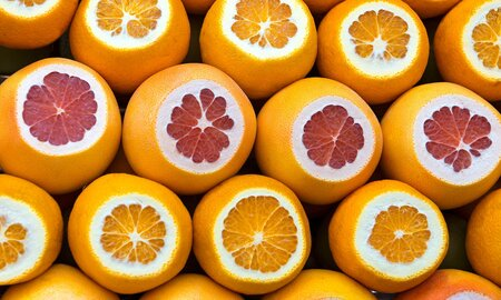 71fbe81f2740 EC  What  039 s the Difference Between Grapefruits and ...