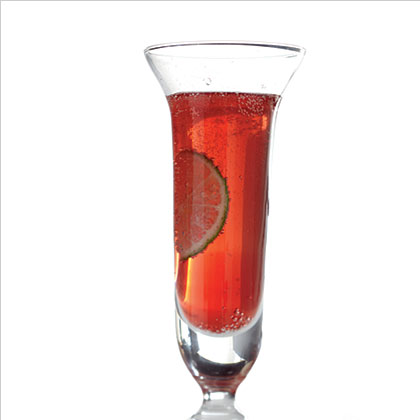 Sparkling Pomegranate Cocktail