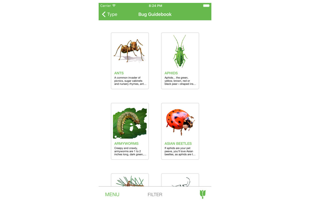 Bug and Weed Identifier