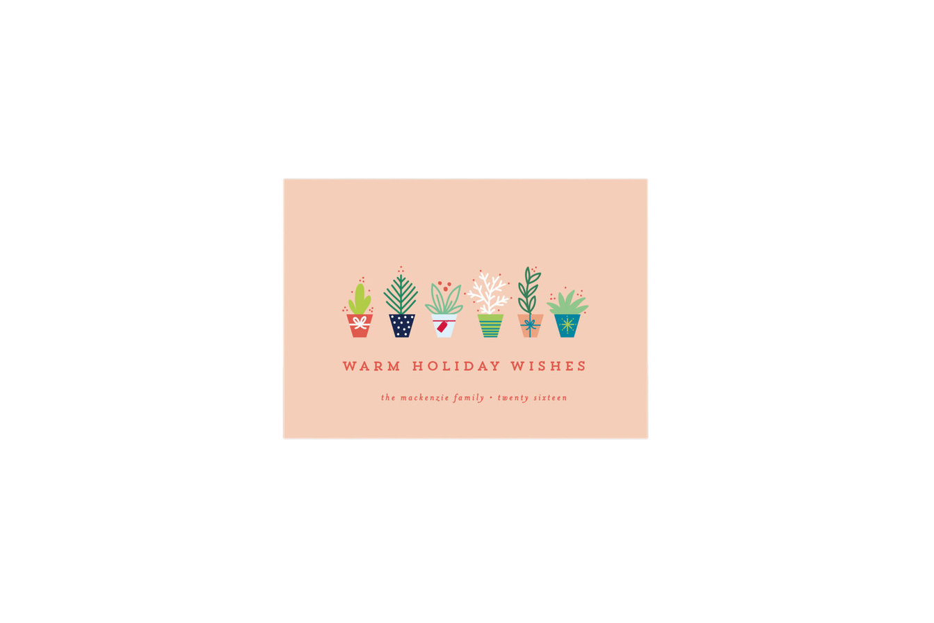 Succulents Holiday Card