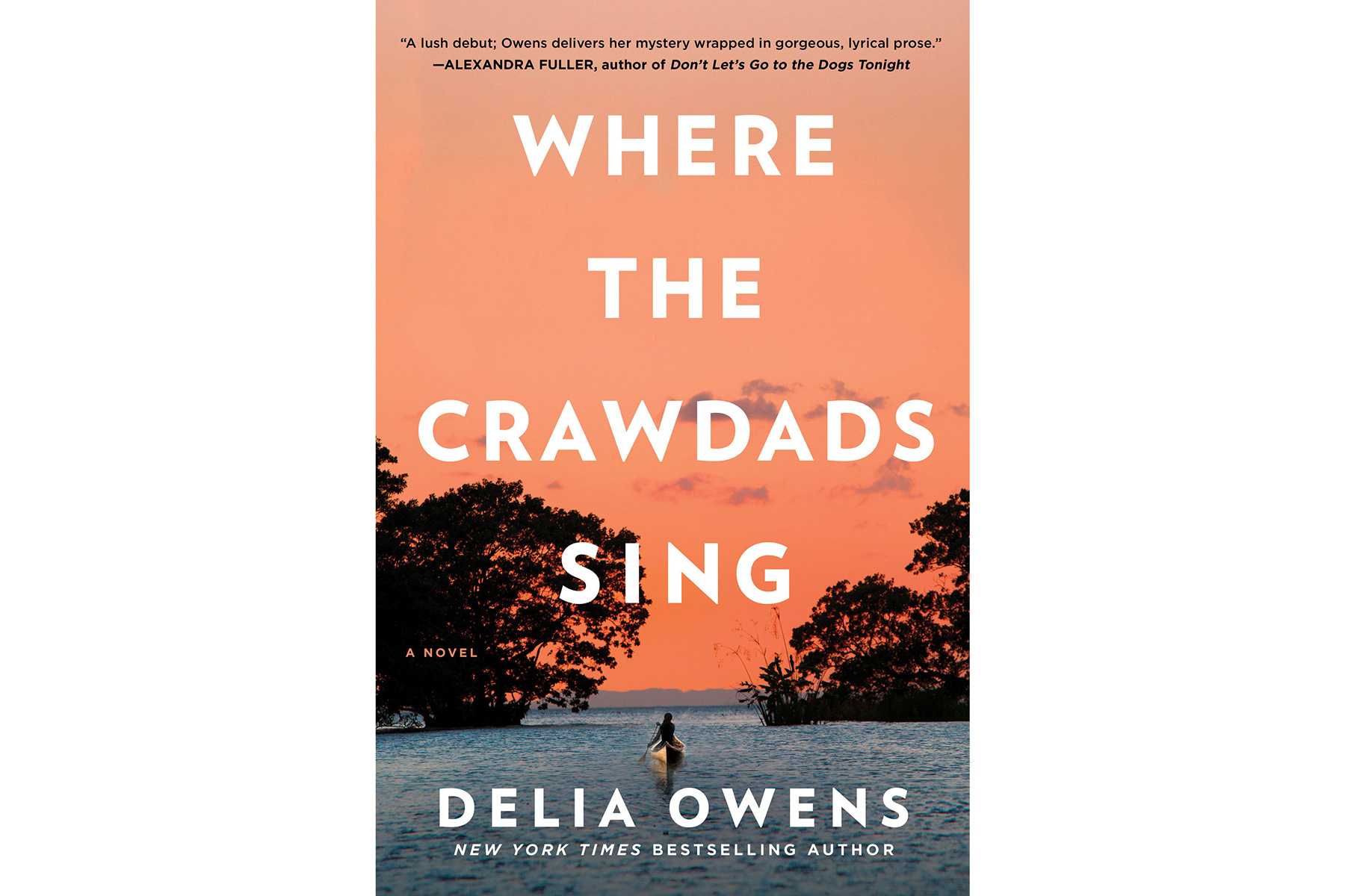 Where the Crawdads Sing, by Delia Owens (Summer Books)