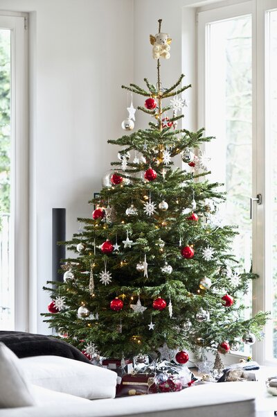 Real Christmas Tree.How To Buy Your First Christmas Tree Real Simple