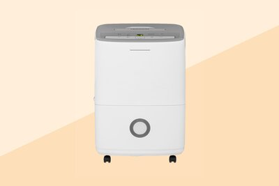 The 5 Best Dehumidifiers for Your Home in 2019 | Real Simple
