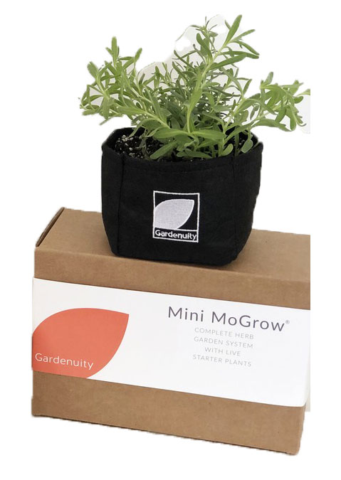 6 Clever Items 08/09/19 Gardenuity Mini MoGrow Kit
