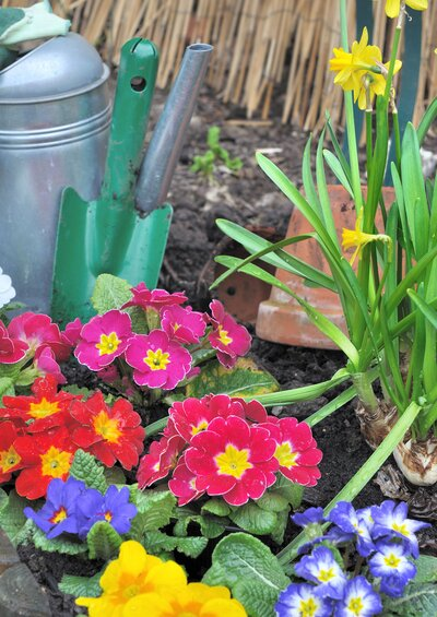 5 Ways to Get Your Garden Ready for Spring | Real Simple
