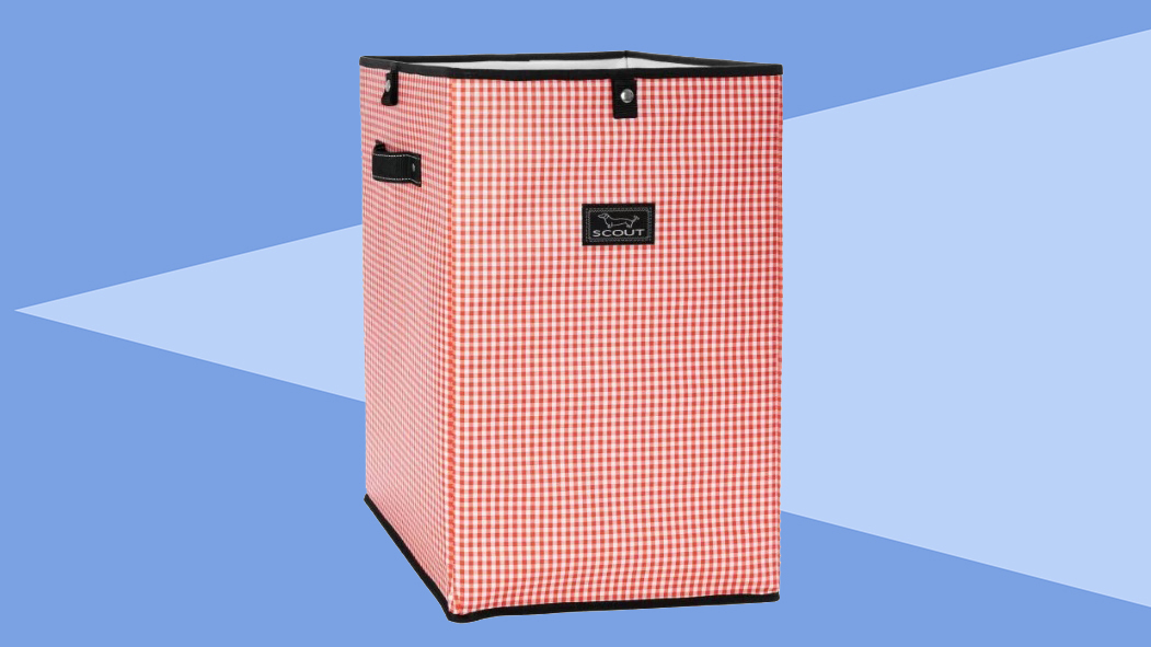 6 Clever Items (2/14/20) - Scout Collapsible trash can tout
