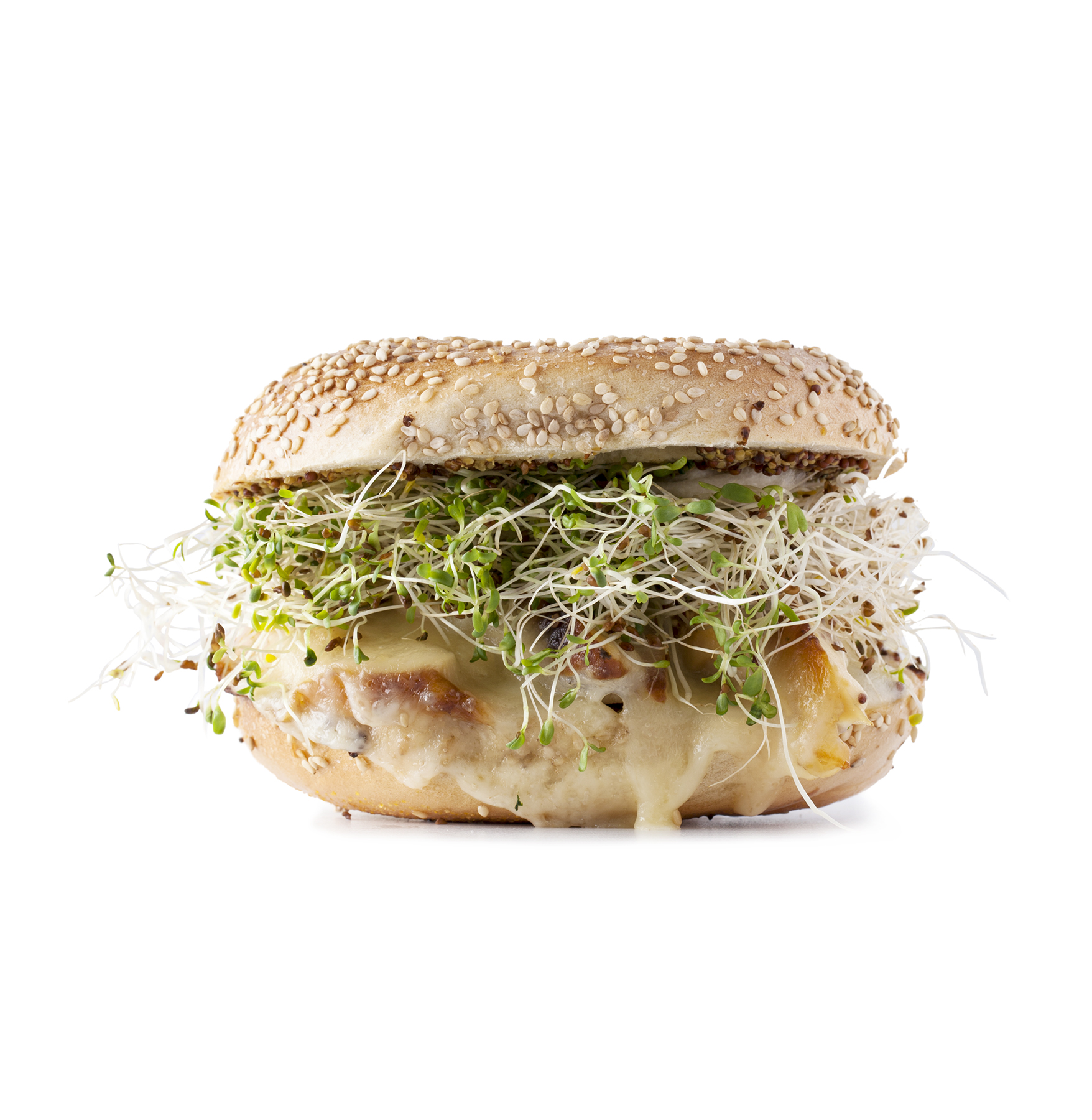 Chicken, Sprouts, and Provolone Sandwich