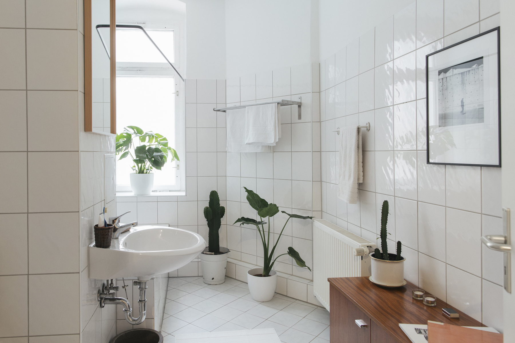 Clean white tile bathroom with plants