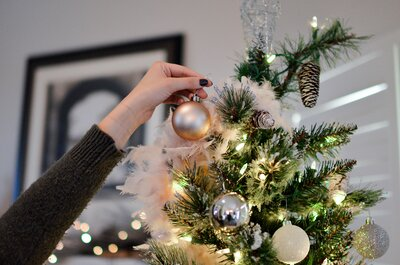 Bugs In Christmas Trees.My Christmas Tree Was Infested With Bugs And It Was Still A