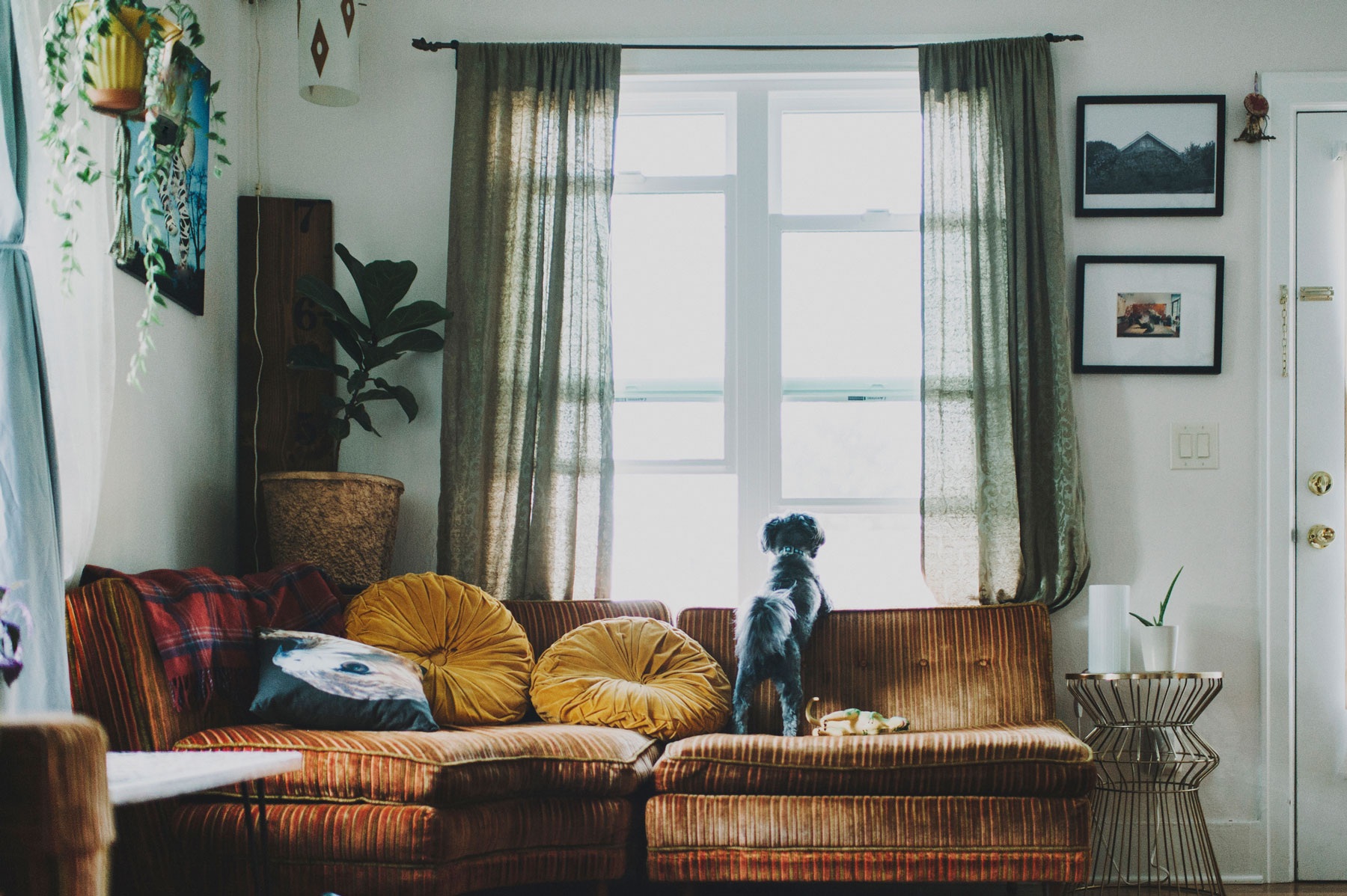Curtains and Window Treatments Guide - where to hang curtains