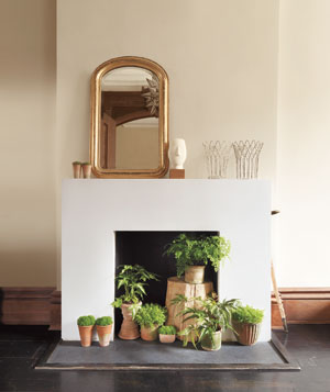 Fireplace filled with plants