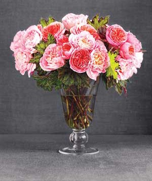 Pink flowers in a vase.