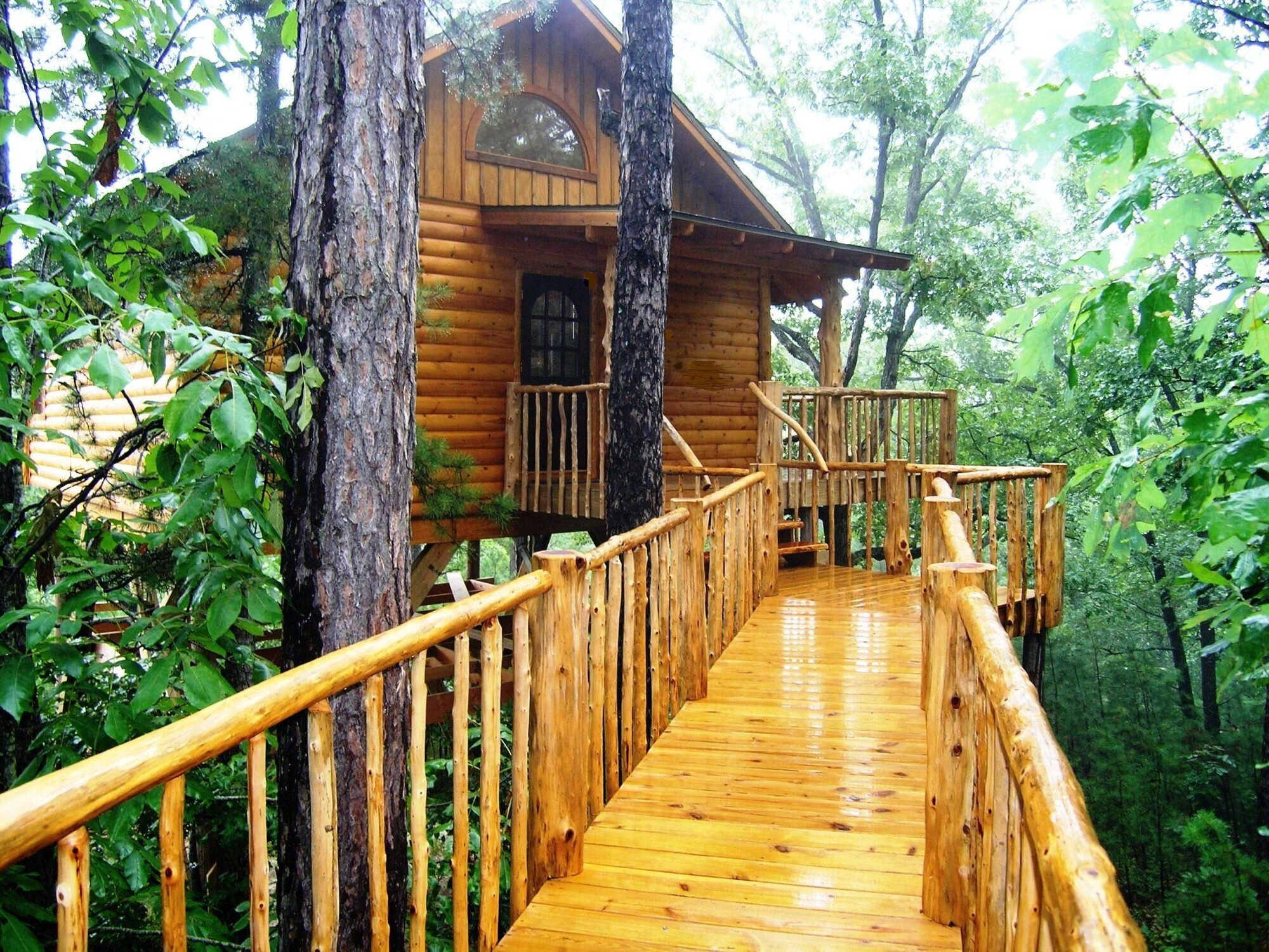 7 Tree Houses You Can Sleep In