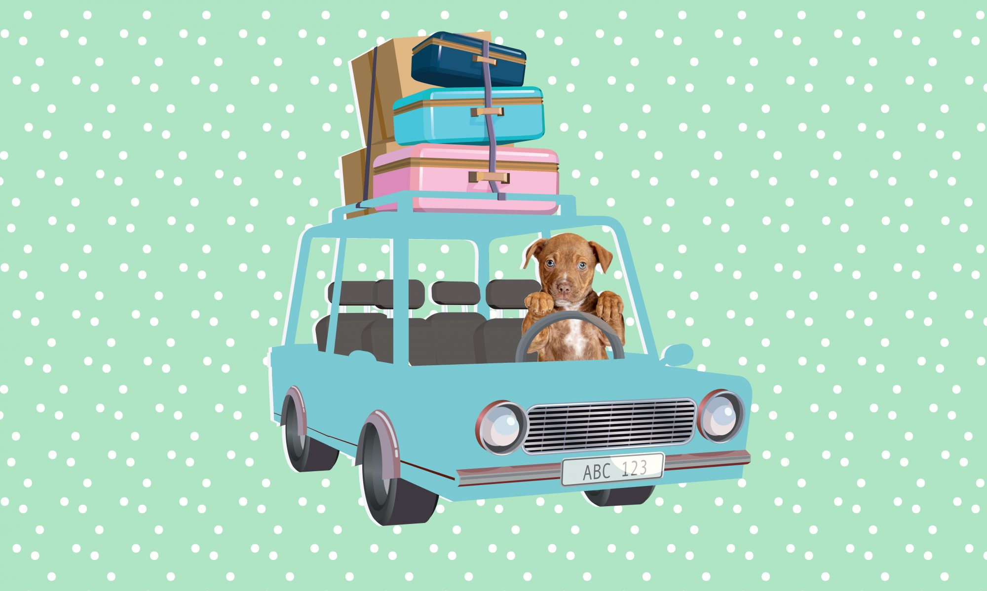 travel-with-pet-tips