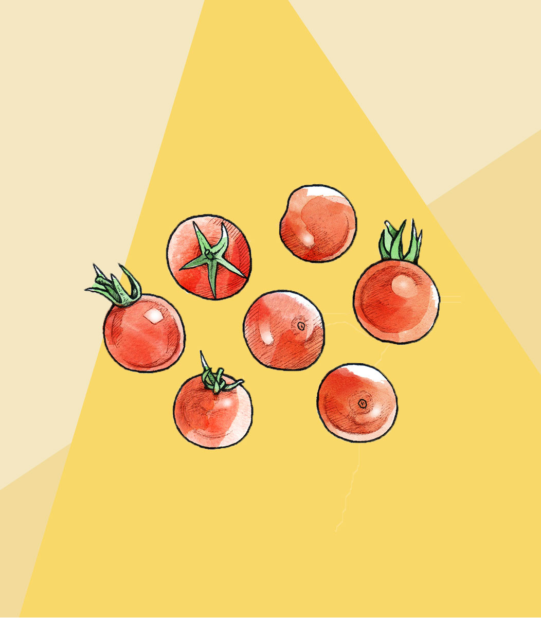 Which Types of Tomatoes Should You Use?