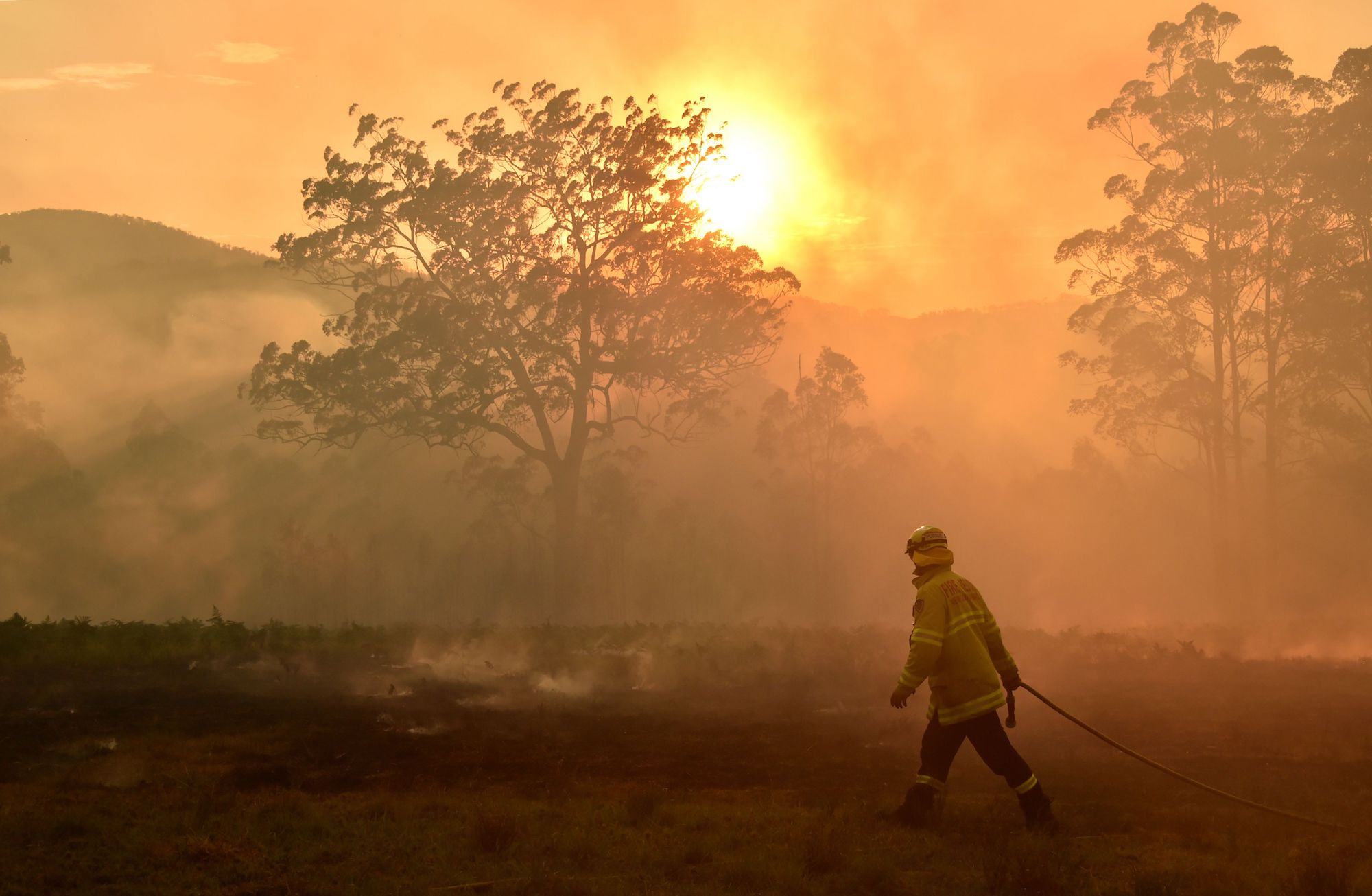 image of firefighter in Australia: How to Help Australia Fires