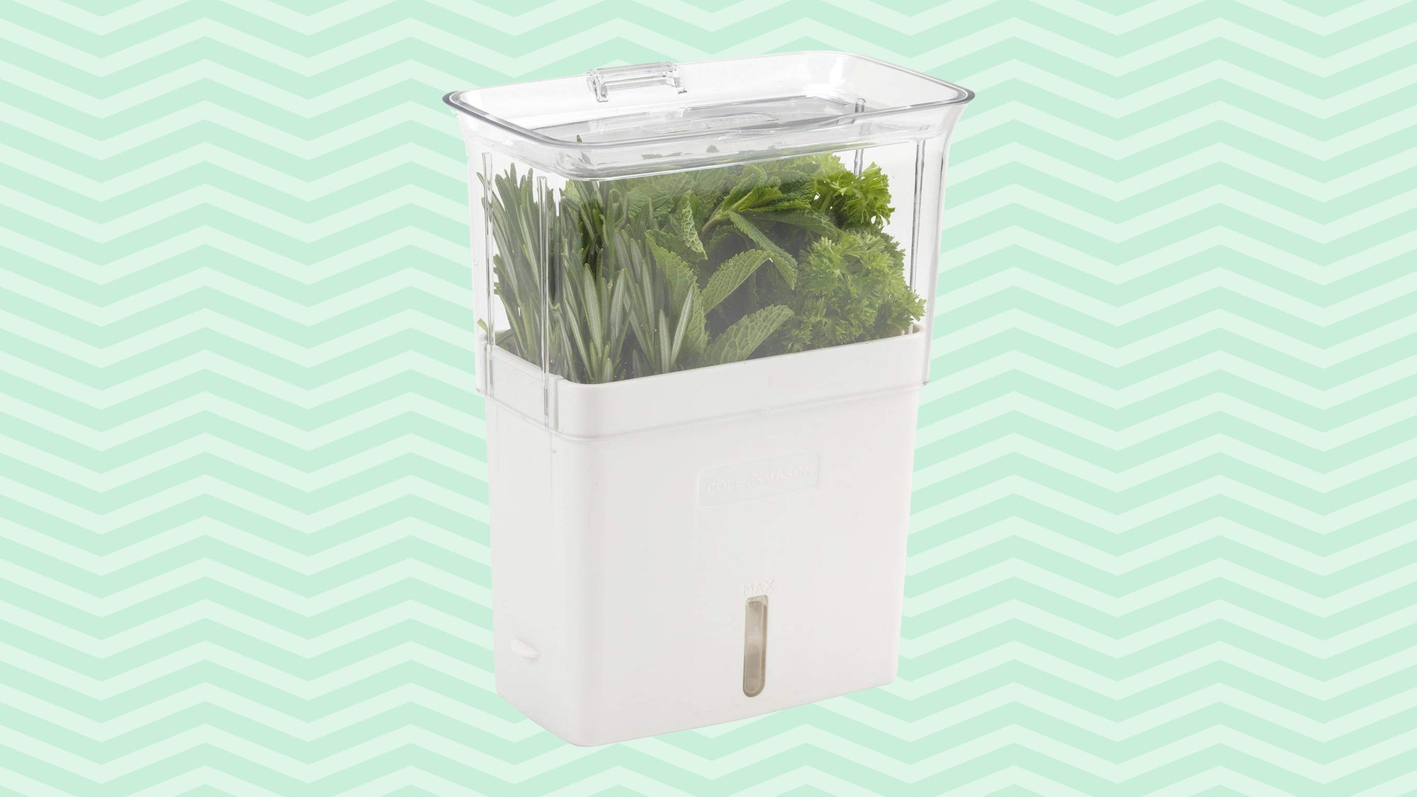COLE & MASON Fresh Herb Keeper, Container Tout