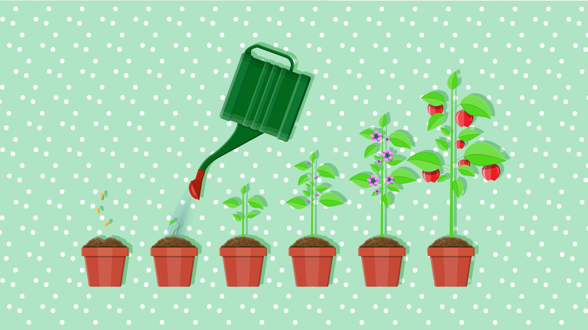 Gardening Advice - gardening tips and more
