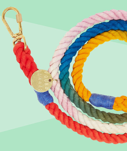 Gifts that give back - henri leash tout from found my animal