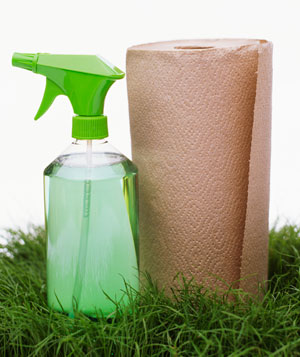Green cleaning spray and recycled paper towels on grass