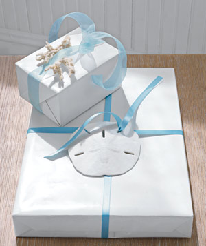Gift box with sand dollar and blue ribbon