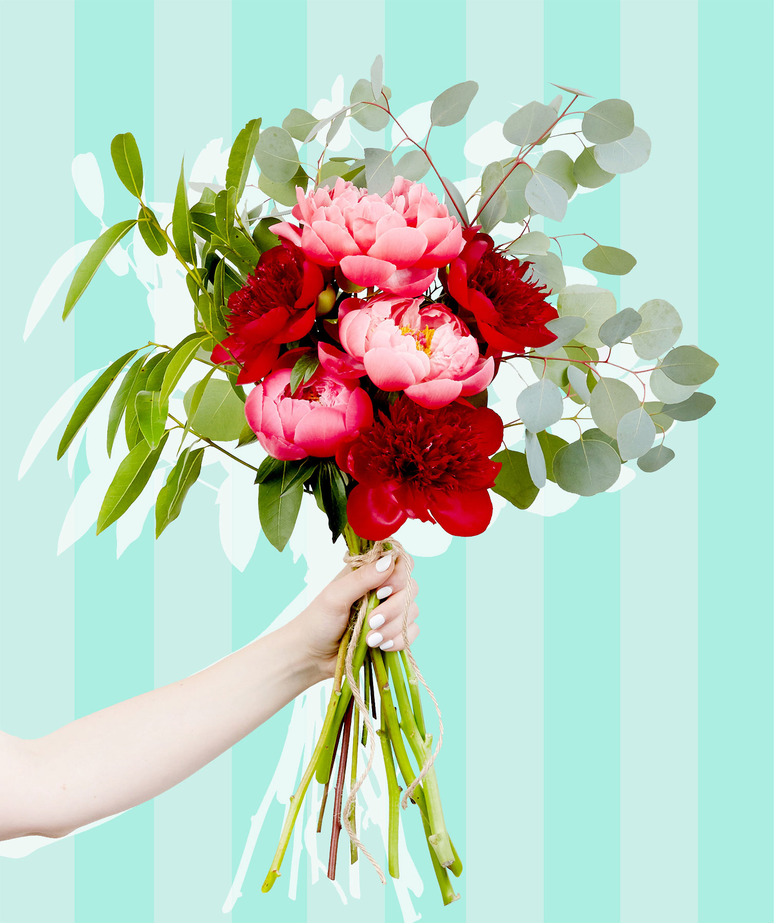Peony care: Peony bouquet of pink flowers