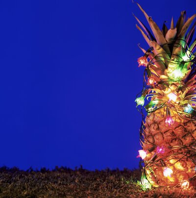 Christmas Pineapple.Forget Christmas Trees Decorated Pineapples Are The New