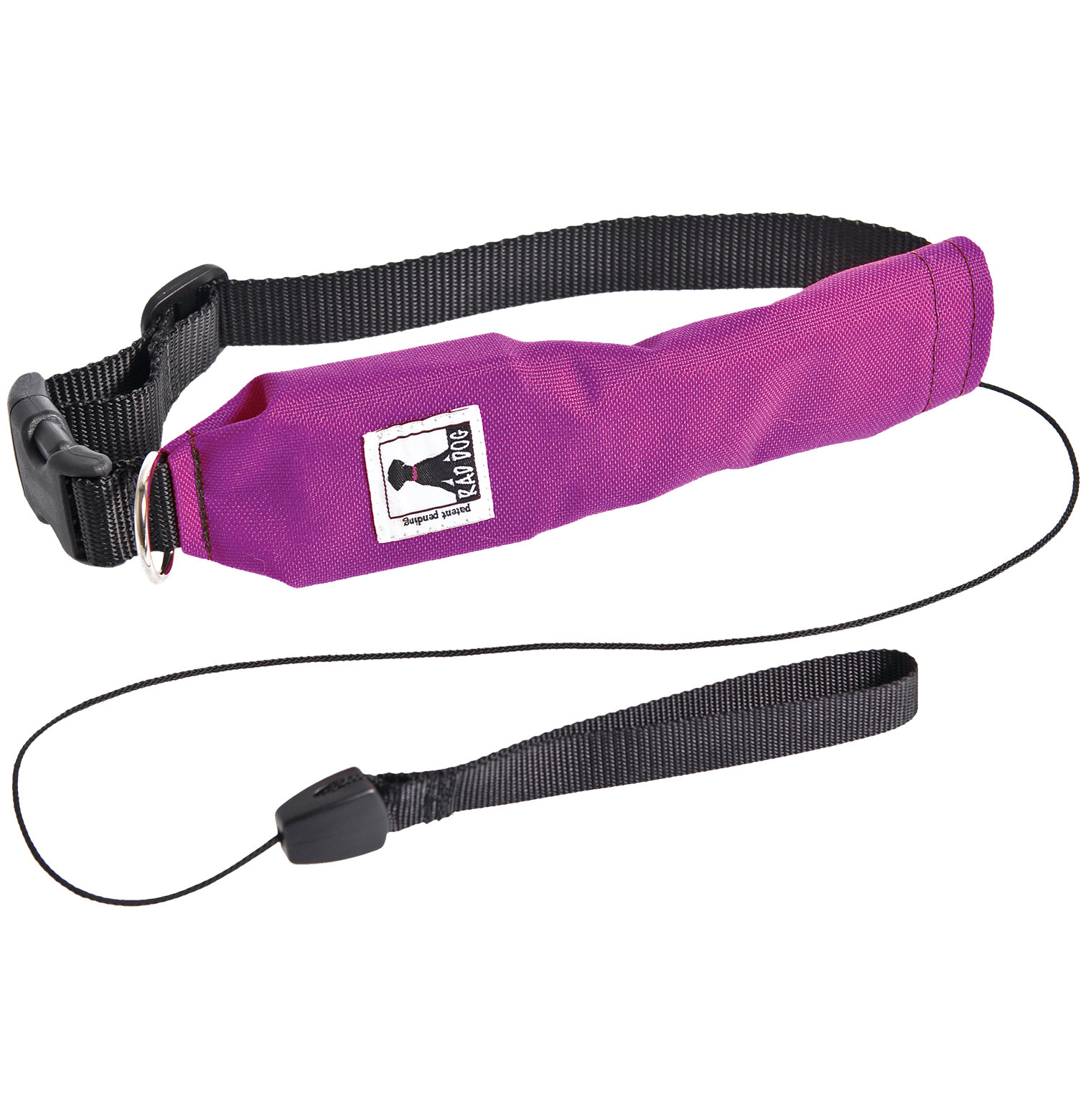 Two-in-One Dog Collar
