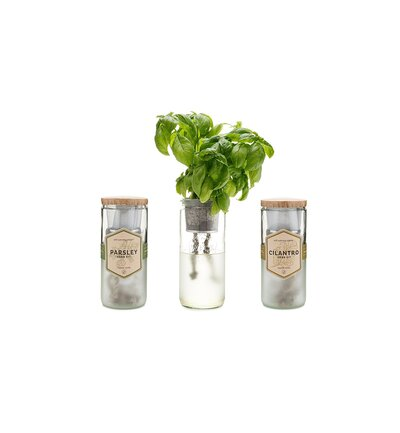 This Indoor Herb Garden Kit Makes Growing Basil Ridiculously