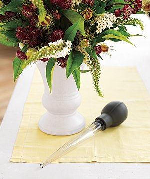 Vase of flowers and a turkey baster