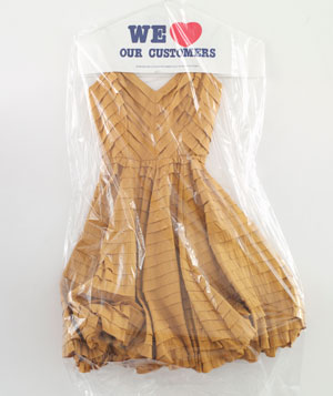 Party Dress in Drycleaning Bag