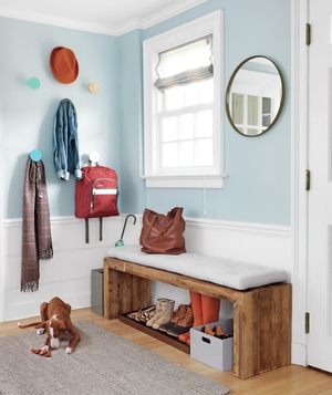 Entryway with dog, shoes, wall hooks - Landscape