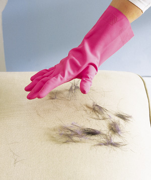 Rubber glove used to remove pet hair