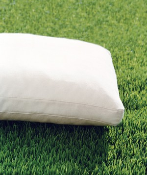 Cushion set out in the sun on grass