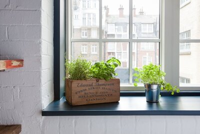 8 Ways to Create Extra Counter Space in a Tiny Kitchen ... Ideas For Baskets Above Kitchen Sink Window With No on