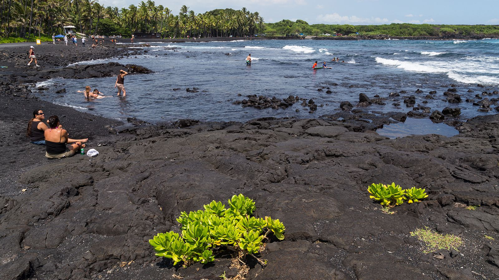 NAALEHU, HAWAII, UNITED STATES - 2015/09/20: Punaluu Black Sand Beach is one the most famous black sand beaches on the Big Island of Hawaii.  Located on the Kau coast near the town of Naalehu, it is frequented by green sea turtles basking on the beach.  S