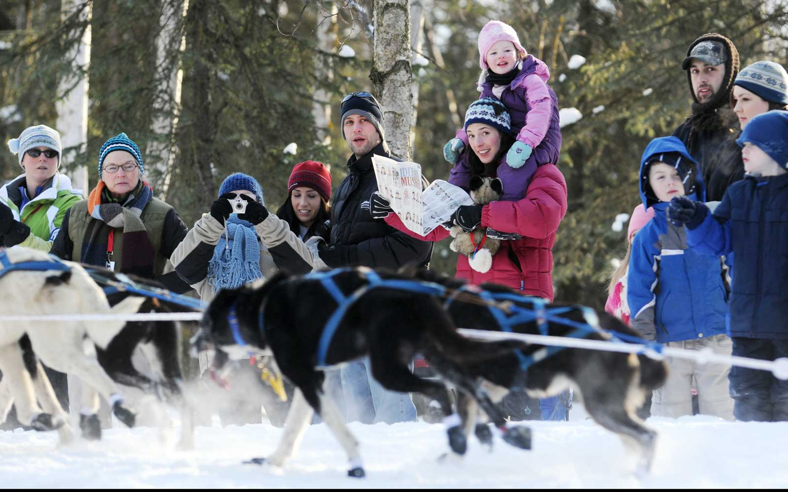 Iditarod fans watch teams round the corner at Goose Lake during the ceremonial start in Anchorage, Alaska.