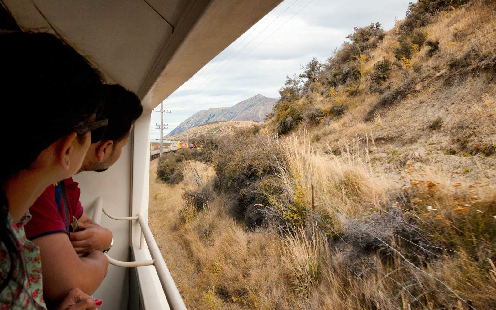 Passengers on a train traveling through the rural landscape of New Zealand