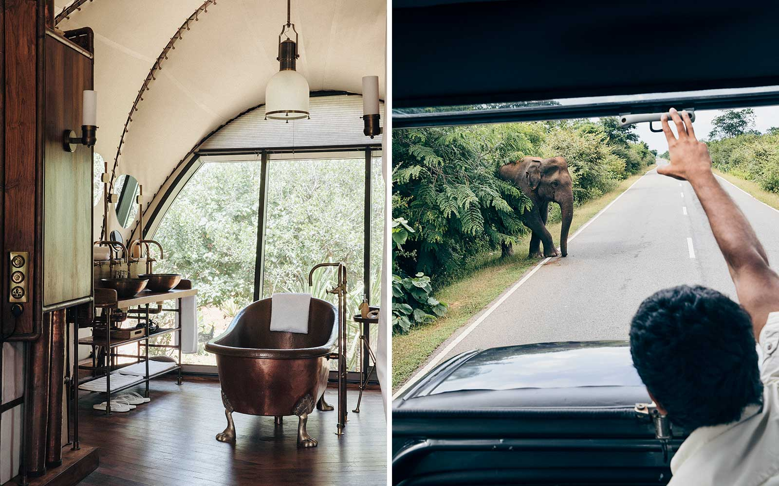 Wild Coast tented lodge in Sri Lanka offers safari experience to see elephants and leopards