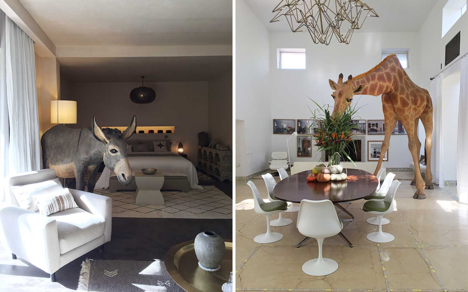 Giant animal artwork in a house tour in Marrakech
