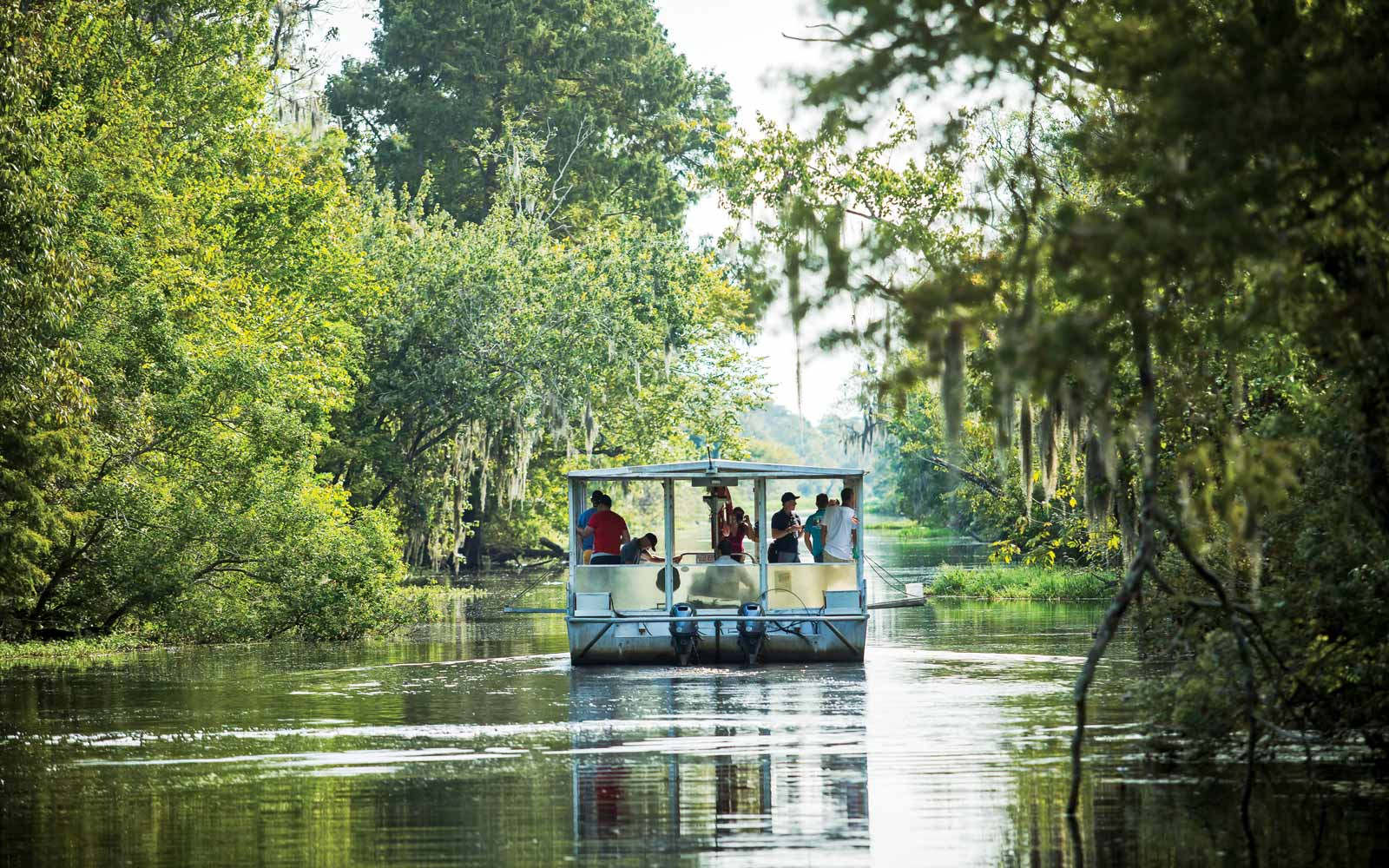 Swamp Boat Tour in New Orleans Plantation Country