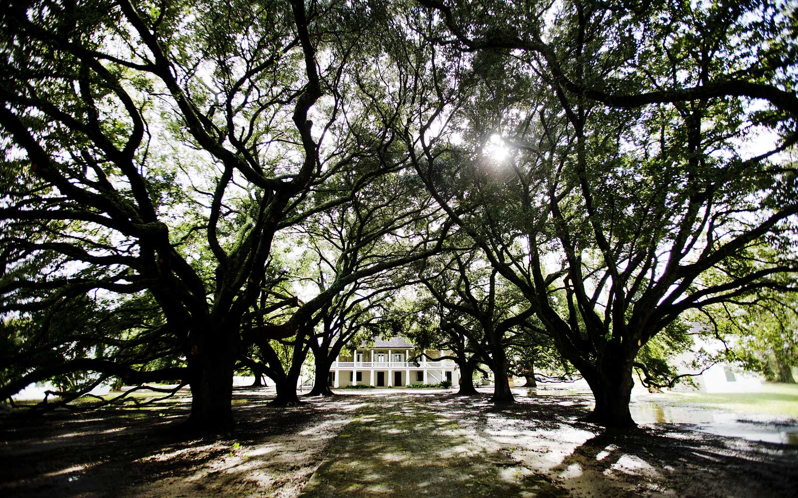 Whitney Plantation in Louisiana