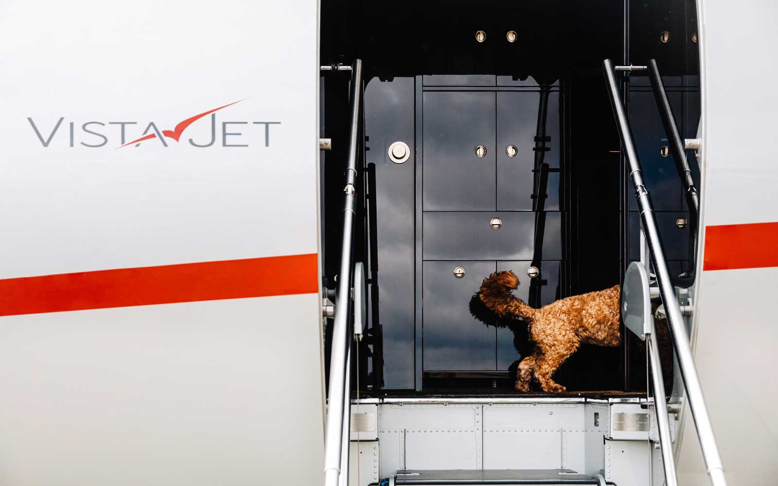 VistaJet Pet Service