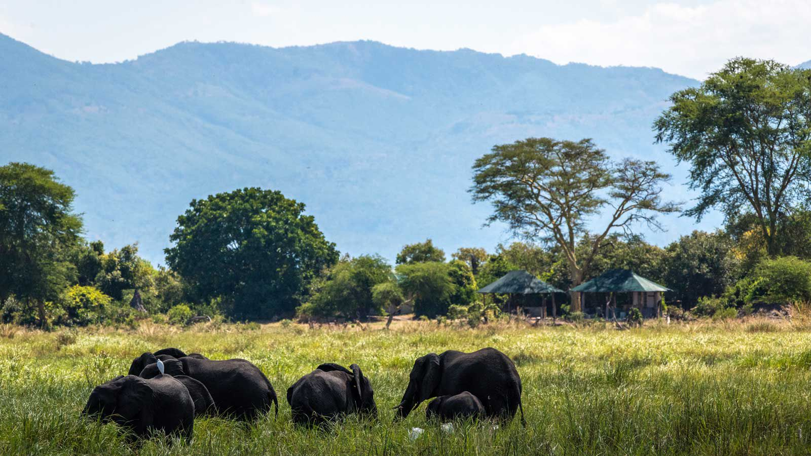 Robin Pope Safaris Kuthengo Camp, in Malawi