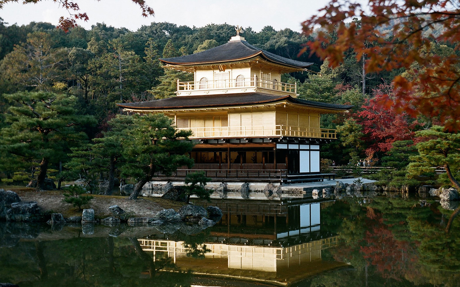 Golden palace of Kyoto