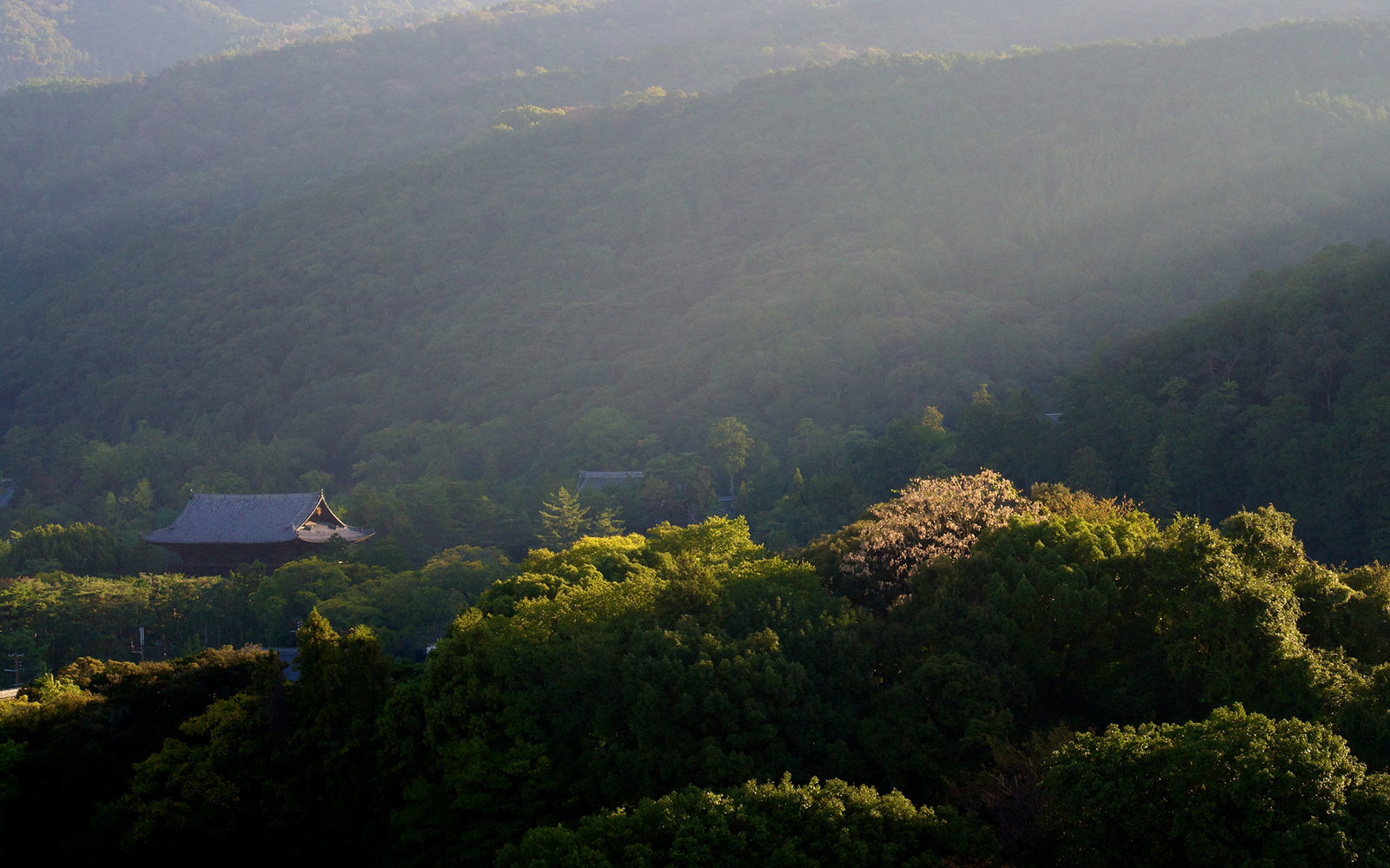 GettyImages-141766643-Japanese-Temples0116.jpg