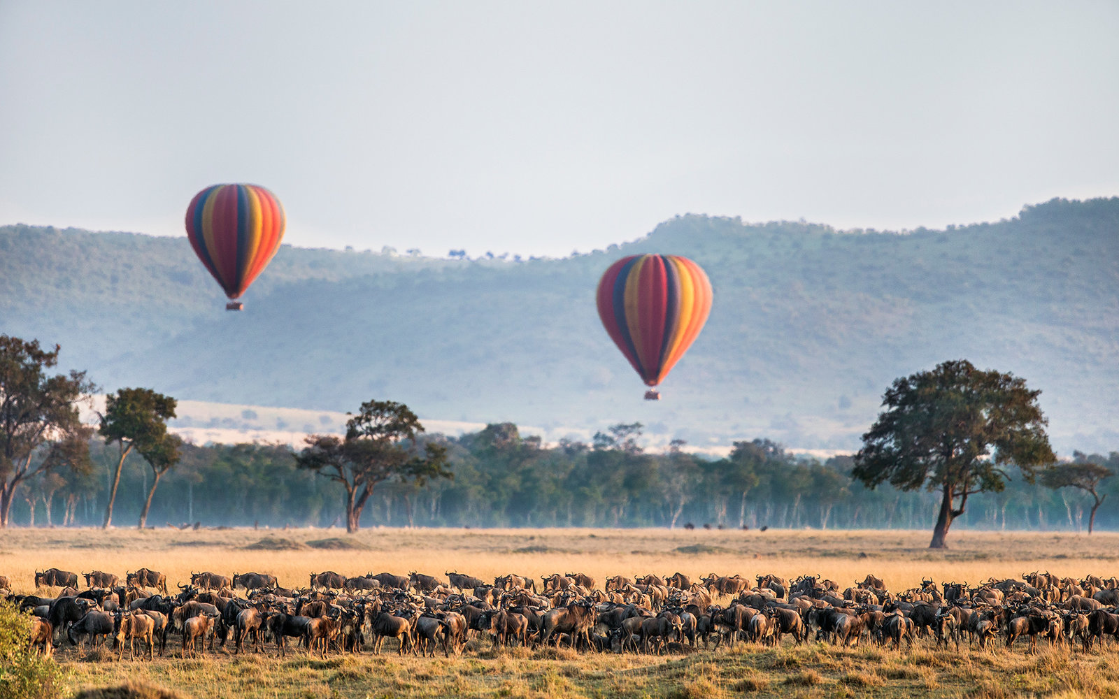 A Hot-Air Balloon Ride Above the Masai Mara, Kenya, Africa