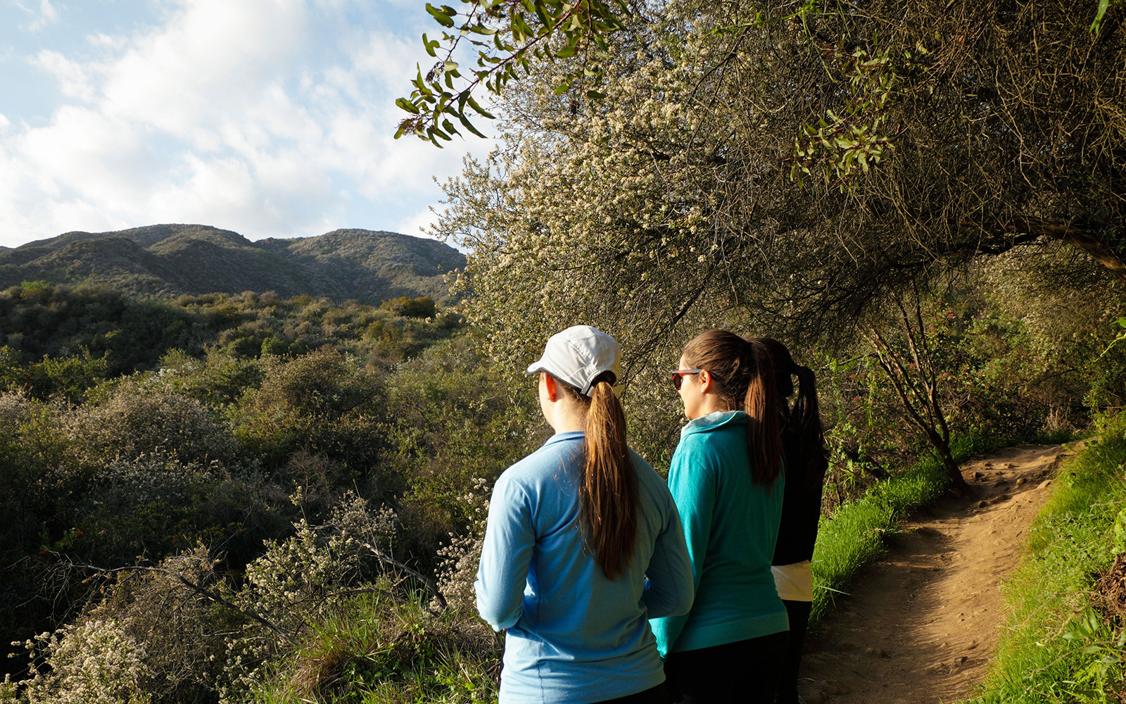 D36NK6 Hikers on the Los Leones Trail (also called Los Liones) gaze at the Santa Monica Mountains