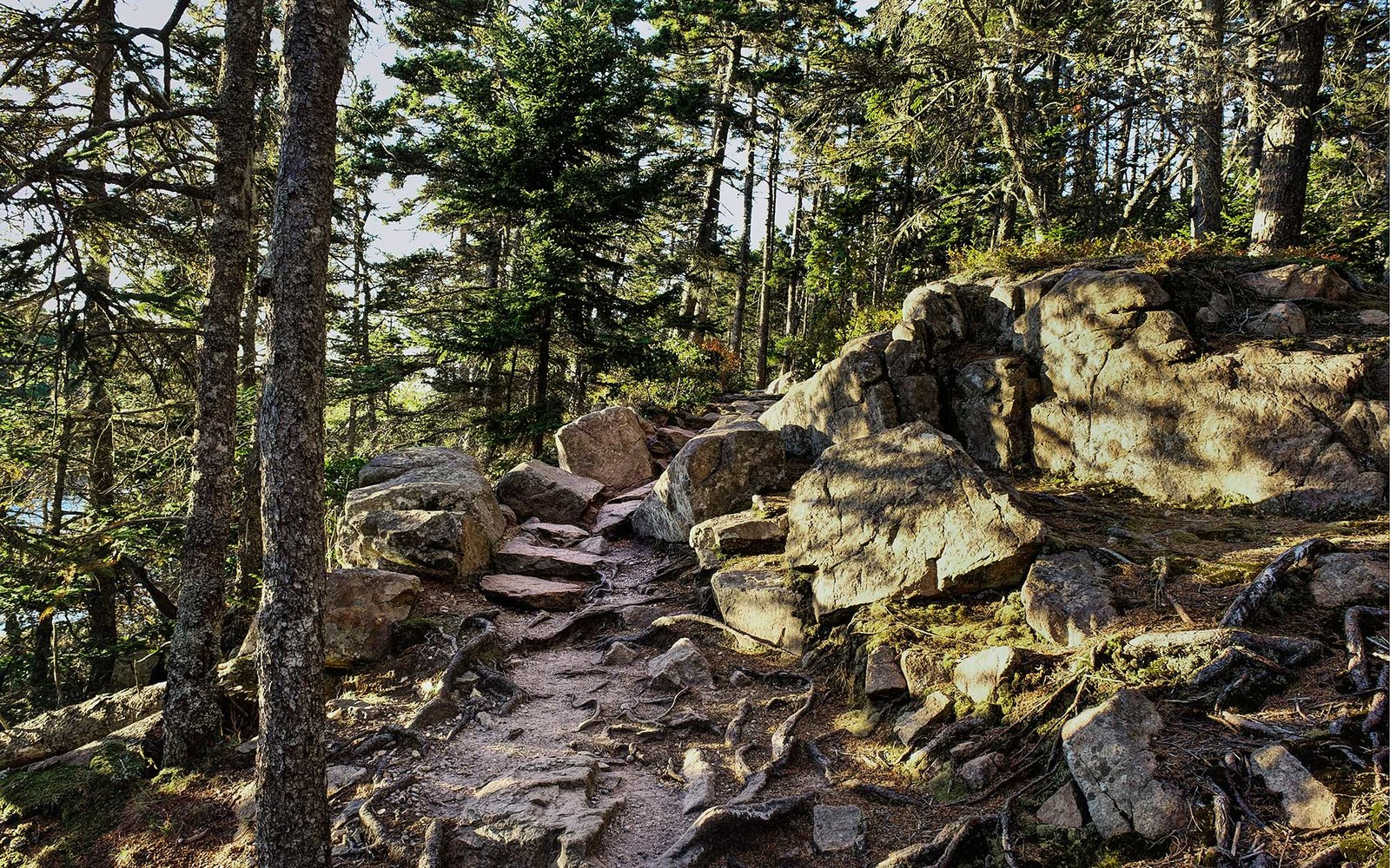 ACADIA NATIONAL PARK, SOUTHWEST HARBOR, MAINE, UNITED STATES - 2010/10/12: Hiking path through the woods, Acadia National Park. (Photo by John Greim/LightRocket via Getty Images)