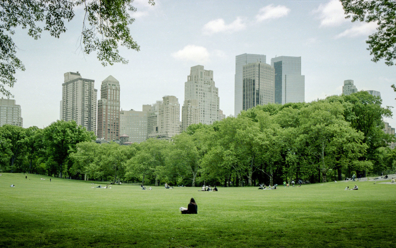 Central Park New York City People Watching